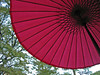 umbrella in Shukkeien