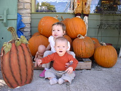 the two punkins again