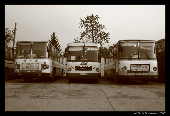 Romanian buses