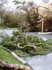 Hurricane Wilma 7
