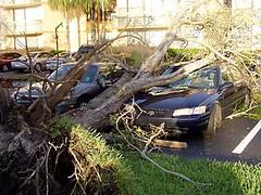 Hurricane Wilma 11