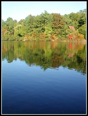 Shelley Lake #1