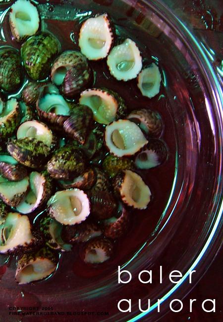 Baler Food 1