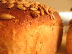 Polenta Millet Sunflower Bread