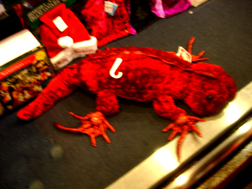holiday iguana