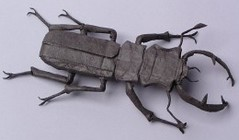 stag_beetle_bp