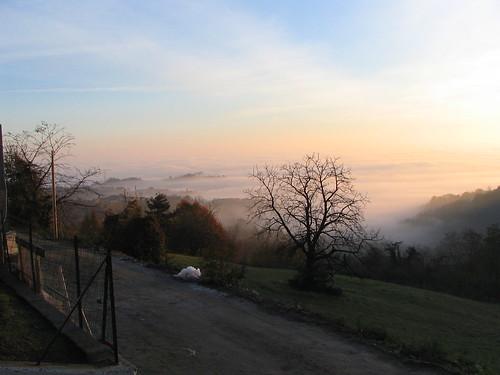 Alba di novembre a Castagneto