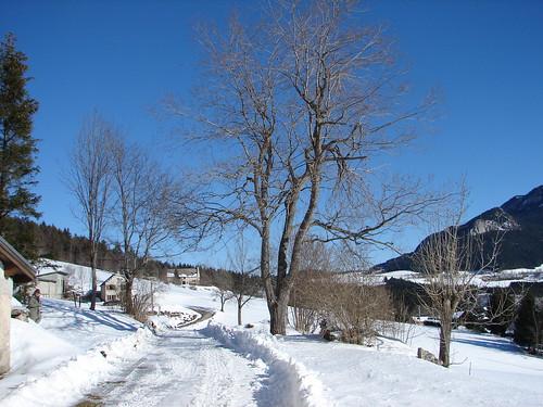 Beauté d'hiver en Vercors