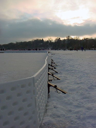 Pond Hockey 231