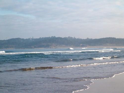 97615713 8475f99863 Las Olas de hoy,  Jueves 9 de Febrero de 2006  Marketing Digital Surfing Agencia