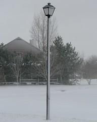 Snowfall in Lewes