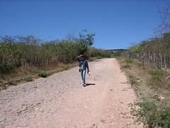 Manu Walking