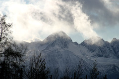 The Misty Mountains photo by The Bugmaster