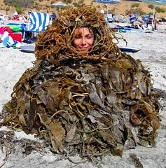 California Sea Monster, Beware, Dangerous When Fed Cookies photo by moonjazz