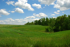 Spring Landscape DSC_2028_e photo by thoeflich