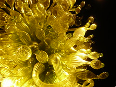 2008-09-13_Chihuly 100