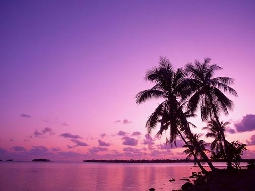 paisajes atardeceres playas