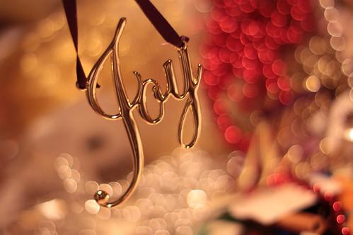 joy -noun 1 source keen pleasure delight greatly valued appreciated
