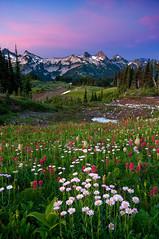 Tatoosh Range photo by Jesse Estes