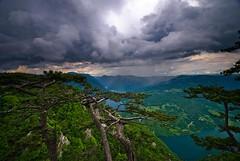 Dreaming on Tara 2 (It's raining down in Bosnia) photo by Miodrag mitja Bogdanovic