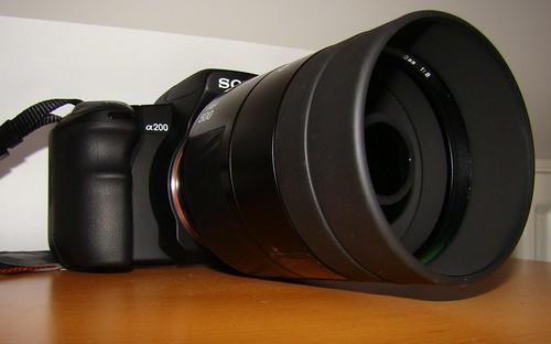 Minolta 500mm f8 birding 228