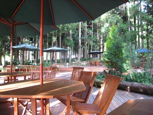 森林咖啡吧@武陵農場露營區