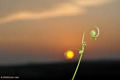 granny n her sun photo by Dunkin Jalki
