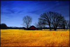 Old Country Barn photo by crowt59