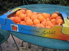 Abricots d'ici