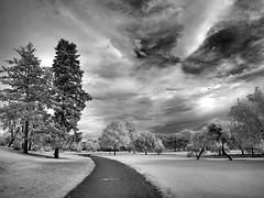 Denver Park photo by Kimberly Dickinson