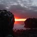 Ecuador and Galapagos-1010320 © Bart Plessers