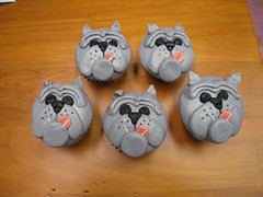 Bulldog cup cakes photo by harebender1