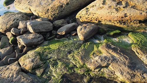 Sydney Bronte Beach May 2011