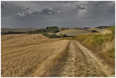 Landscape near Pienza ... photo by Frank Brauner