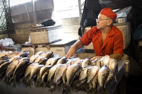 Peixes Frescos no Mercadão Improvisado