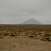 Peru-5042 © Bart Plessers