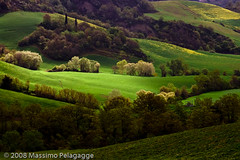 Primavera in Toscana 1 photo by Massimo Pelagagge