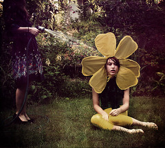 Photosynthesis. photo by Chrissie White