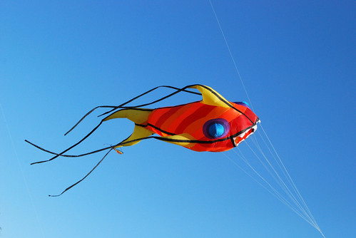 Koi fish kite for Koi fish kite