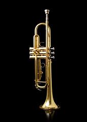 trumpet%2C+guitar