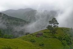 Dreaming on Zlatibor 3 - Mokra Gora (Wet Mountain) photo by Miodrag mitja Bogdanovic