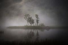In the mist photo by Espen Dalmo