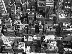 mazing city