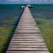 Guatemala & Belize-5188 © Bart Plessers