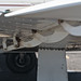 Dubbo Airport