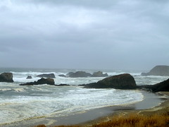 One of the very few rainy days during my stay. This is the beach across the street from Seal Rocks RV Cove.