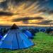 Fleet of tents at dawn