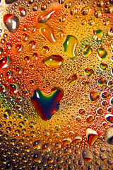 Dew Loves You photo by Michelle in Ireland