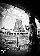 A view of the Kolam & Gopuram photo by Bhargavii Mani