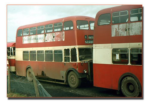 Former Plymouth OCO516